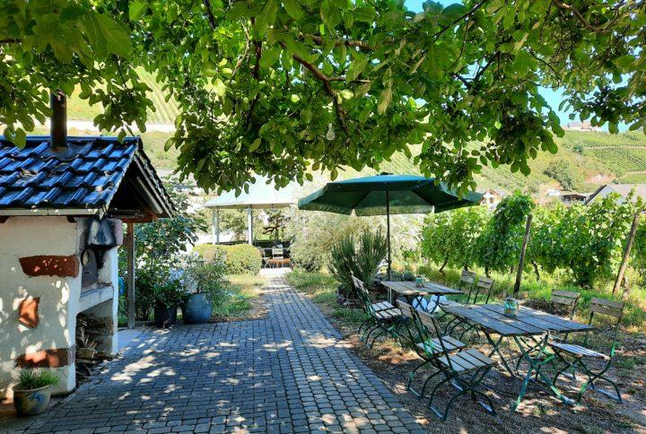 Weingut Garten 2